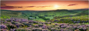 Yorkshire Landscape by Sam Jackson