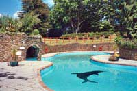 Secluded country cottages and barn conversions in devon - Cottages in devon with swimming pool ...