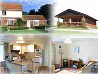 holiday cottages and lodges, dogs welcome, near Exmoor