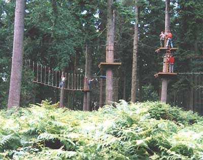 Thrilling but safe 'Go Ape' aerial obstacle course in Thetford Forest, Norfolk