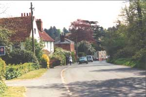 Passing houses with cottage gardens and blossoming trees on the way down hill