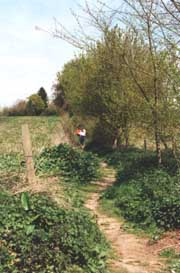 Go for a ramble on one of the numerous footpaths in the Dedham and Flatford Mill area of Suffolk whilst on your self-catering holiday or short break