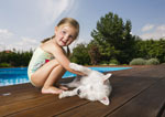 pet-friendly cottages with a swimming pool