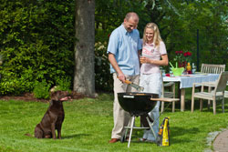 5 star rural cottages for couples with dogs