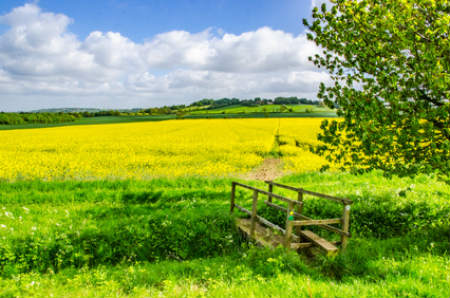 Lincolnshire Wolds AONB