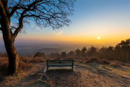 Surrey Hills AONB in England's South East