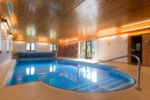 family indoor swimming pool