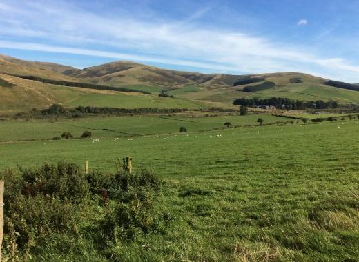 Cheviot Hills, ideal riding country