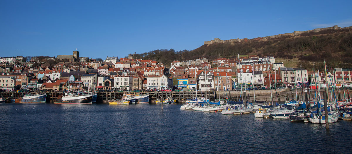dogs friendly holiday cottages in Scarborough